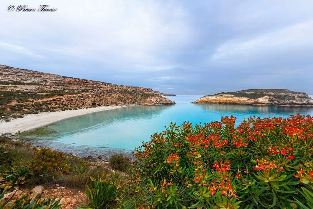 Isola dei Conigli Lampedusa
